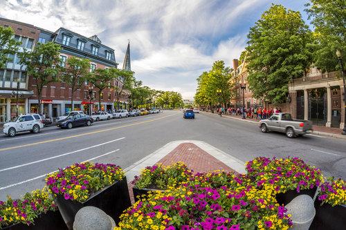 cambridge-harvard-square-boston