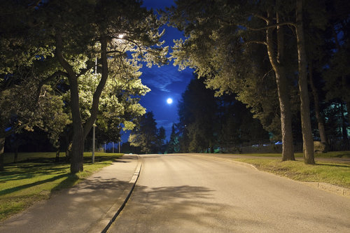 suburban-community-suburbs-trees-homes-home-house